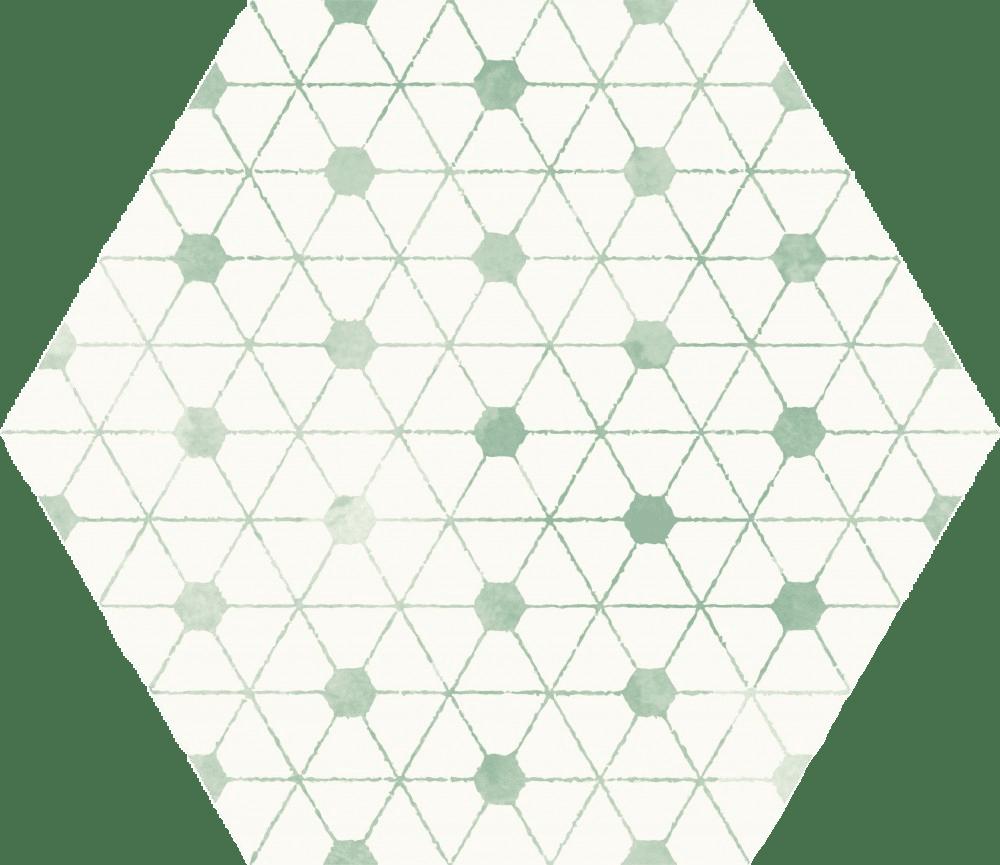 Dotus EXA 21.5×25
